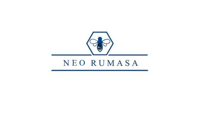 Ruiz Mateos cerca inversors per a Neo Rumasa