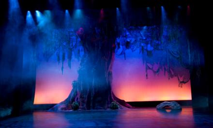 Nin de primària denuncia el seu director de teatre per donar-li per cinquè pic consecutiu el paper d'arbre